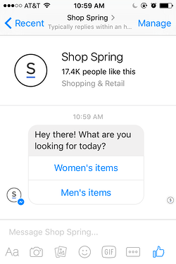 The Spring bot in Facebook Messenger.