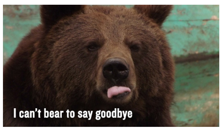 "Photo of a bear...we use shortcuts to let customers know we can't ""bear"" to say goodbye."